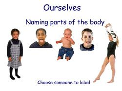 labelling-body-parts.jpg
